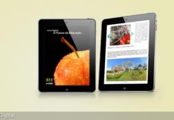 e-mídia – Editoração Digital
